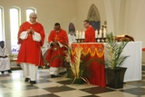 Palm Sunday of the Passion of the Lord